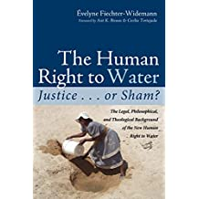 The Human Right to Water: Justice . . . or Sham?: The Legal, Philosophical, and Theological Background of the New Human Right to Water (English Edition)