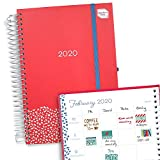 Boxclever Press Family Life Book Diary 2020. One of The Must-Have 2020 Diaries! Week-to-View 2020 Diary. A5 Family Planner 2020 to use Until Dec