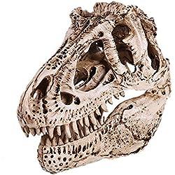 1/12scale Colección Modelo Cráneo Fósil de Tiranosaurio Dinosaurio Resina Blanco