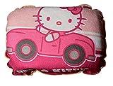 Kaufmann HKPMK740 Reinigungsschwamm, Autopflegeschwamm, Pink