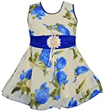 #8: Cute Fashion Kids Girls Baby Princess Sifon Print Party Wear Frock Dresses Clothes for 3 Months to 18 Months (Red, 12-18 Months)