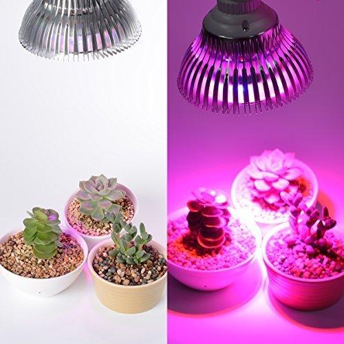 Led Luci Per Piante, OxyLED Lampada Da Coltivazione Indoor Idroponica, E27  24W Grow Light, Lampada Crescita Perfetto Per Crescita Coltivazione Piante  Da ...