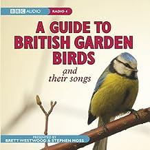 A Guide to British Garden Birds