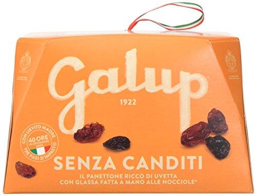 Galup nv04 panettone senza canditi, 750 gr