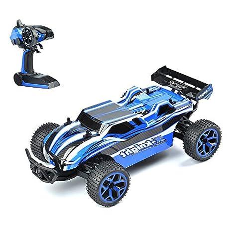 GizmoVine RC Auto 4WD Hochgeschwindigkeit 1:18 2.4Ghz Ferngesteuerter Racing Buggy Car Spielzeug , Fahrzeug mit aufladbaren Batterien, Blau