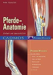 Pferde-Anatomie: Einfach und übersichtlich (Cadmos Pferdewissen)