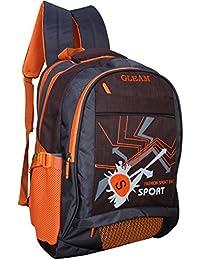 Gleam Fashion Sport School Bag ( Brown & Grey ) With Rain Cover