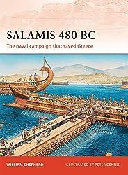 Salamis 480 BC (Campaign, Band 222)