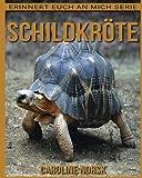 Schildkröte: Ein Kinderbuch mit erstaunlichen Fotos und interessanten Fakten über Schildkröte (Erinnert euch an mich Serie)