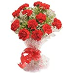 Florazone Admiration Fresh Flowers Bouquet Bunch of Red Carnations