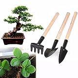 #10: Ranchoman 3-Pack Small Garden Tool Set - Garden Triangle Shovel+Square Shovel+Rake for Women Shovel Rake Spade Wood Stick