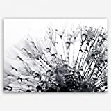 ge Bildet Hochwertiges Leinwandbild Pflanzen Bilder - Another World - schwarz weiß - Blumen Natur Pusteblume - 70 x 50 cm Einteilig | Wanddeko Wandbild Wandbilder Wohnzimmer deko Bild | 2206 H