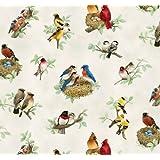Elizabeth de Studio hermosas aves Quilt Tela Por El Patio