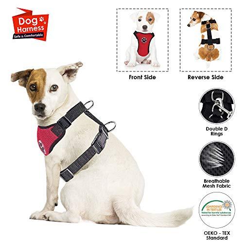r, Haustier Weste Harness für Hunde Sicherheit im Auto Verstellbarer Hals und Brustgurt, Breathable Soft Fabric Multifunktionsweste mit Schnellverschluss Reisen täglichen Gebrauch ()