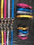 Silber Funkelnd Hund Halsband und Leine Set-Extra klein (15,2-20,3cm, 15-20cm)