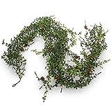 goFloral Lärchen-Girlande künstlich mit Zapfen 180 cm grün