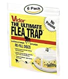 6 Pack : Victor M231 Ultimate Flea Trap Refills,