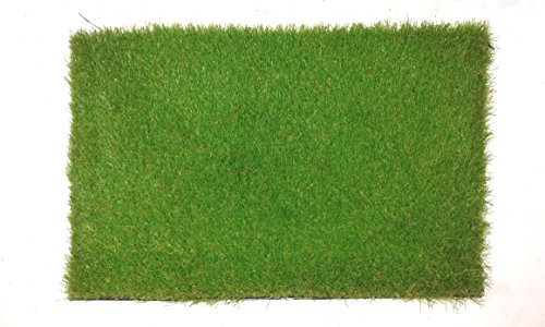 Agra Dari Artificial Soft Synthetic Grass Mat - 24