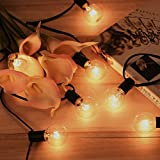 Tomshine AC220V 175W 25ft 25*G40 Globe Bulbs String Strip Light with E12 Socket for Patio Garden Party Christmas Holiday Wedding Decorations Warm White