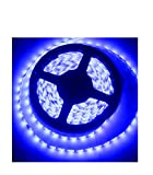 ivatech 01W050b 1300SMD LED Padiglione auricolare impermeabile IP6524V 5m per camion Bus Van Pick Up luminoso blu
