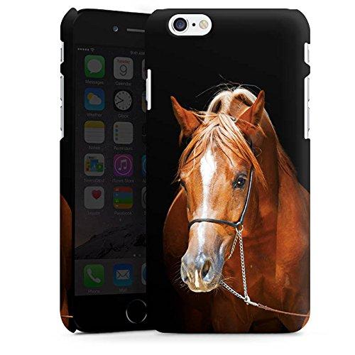 Apple iPhone X Silikon Hülle Case Schutzhülle Pferd Horse Stute Hengst Premium Case matt