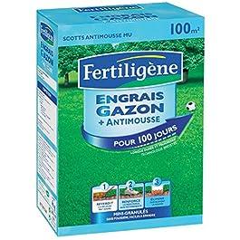 Engrai gazon + anti mousses longue durée Fertiligène