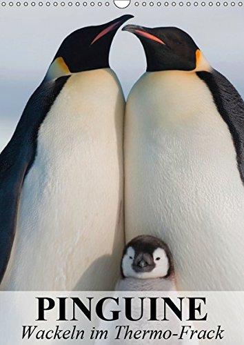 Pinguine - Wackeln im Thermo-Frack (Wandkalender 2019 DIN A3 hoch): Kaiser- und Königspinguine in ihrem natürlichen Lebensraum (Monatskalender, 14 Seiten ) (CALVENDO Tiere)