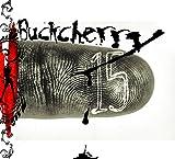 Songtexte von Buckcherry - 15