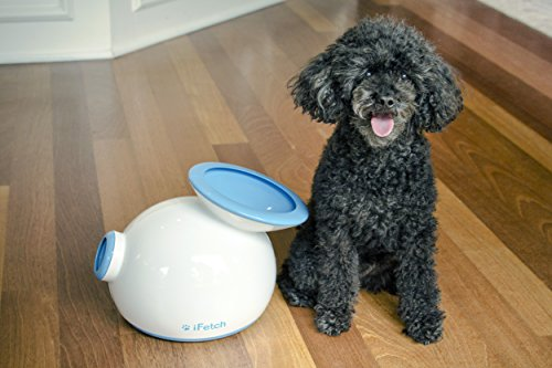 iFetch - Automatic Ball Launcher for your Dog! 4