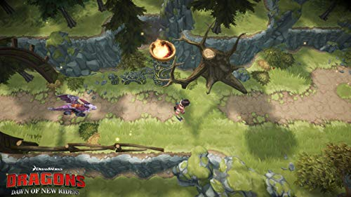 Dragons Dawn of New Riders  screenshot