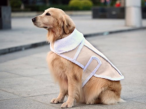 Namsan Dog Warm Coat,Dog Jacket,Winter Dog Clothes,Cold Weather Dog Jacket...