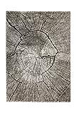 Homie Living Moderner Kurzflor Designer Teppich in pflegeleichter Holzoptik (beige-braun-schwarz, 120 x 170 cm)