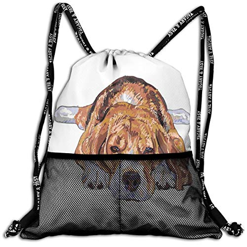 Jet Nylon Shorts (RAINNY Drawstring Backpacks Bags,Old Dog Resting Sleeping Tired Puppy Short Haired Purebred Sketch Art,5 Liter Capacity,Adjustable)