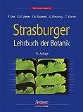Strasburger. Lehrbuch der Botanik für Hochschulen - Peter Sitte