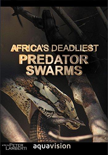 Predator Swarm