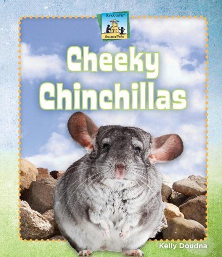 Cheeky Chinchillas (Unusual Pets) by Kelly Doudna (2013-01-01)