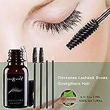 L'olio essenziale dei capelli di 15ML dell'olio essenziale dei capelli di ricino La crescita del sopracciglio impedisce l'invecchiamento della pelle L'olio organico di ricino