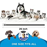 uokoo pest control collars, waterproof dog anti flea collar, flea and tick collars for dogs cats, safe natrual hypoallergenic UOKOO Pest Control Collars, Waterproof Dog Anti Flea Collar, Flea and Tick Collars for Dogs Cats, Safe Natrual Hypoallergenic 51qh 2Bhi JcL