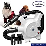 InLoveArts Low Noise Dog Hair Dryer Blaster for Big Dog Stepless Adjustable Speed Dog Grooming Blower with Heater Pet Hair Dryer with 3 Different Nozzles