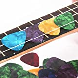 SG Musical - Warner 4pcs. 0.46 Thickness Celluloid Guitar Picks(Plectrums)