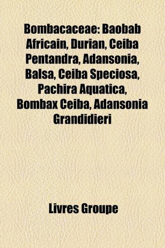 Bombacaceae: Baobab Africain, Durian, Ceiba Pentandra, Adansonia, Balsa, Ceiba Speciosa, Pachira Aquatica, Bombax Ceiba, Adansonia