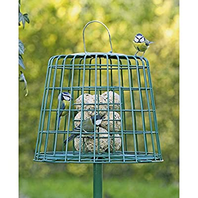 C J Guardian Fat Ball And Suet Bird Feeder