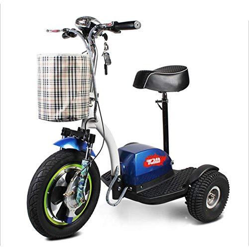 DLY Anziani Disabili Triciclo Elettrico per Sedie a Rotelle Anziani Adulti All'Aperto Comodo Scooter da Viaggio Telecomando Intelligente Sicuro e Confortevole 48V12A