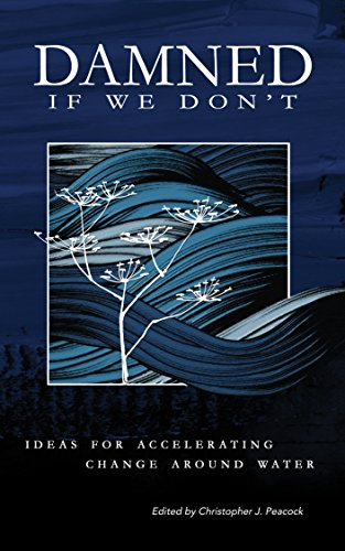 Damned if We Don't!: Ideas for Accelerating Change Around Water. (English Edition) - Christopher Peacock