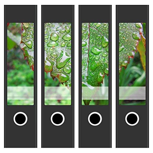 4 Akten-Ordner Etiketten/Aufkleber/Rücken Sticker/mit Design Foto Morgentau/für breite Ordner/selbstklebend / 6 cm breit