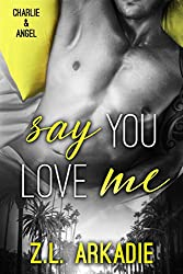 Say You Love Me: Charlie & Angel (LOVE in the USA Book 11)