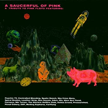 A Saucerful Of Pink - A Tribute To Pink Floyd 0