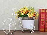 Home - Flower shelf ZWD Supporto per Fiori in Ferro, Supporto per vasi da Fiori Deposito per Biciclette Windowsill Office Desktop Plant Stand 41 * 28CM Household (Color : White, Size : 41 * 28CM)