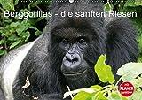 Berggorillas - die sanften Riesen (Wandkalender 2019 DIN A2 quer): Berggorillas in ihrem natürlichen Lebensraum (Geburtstagskalender, 14 Seiten ) (CALVENDO Tiere)