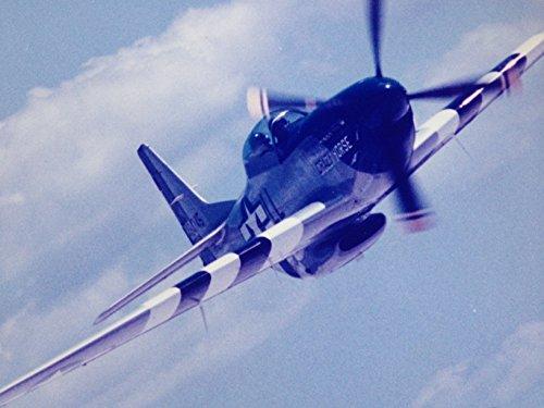 P-51 MUSTANG AEROBATIC FLIGHT: STALLION 51